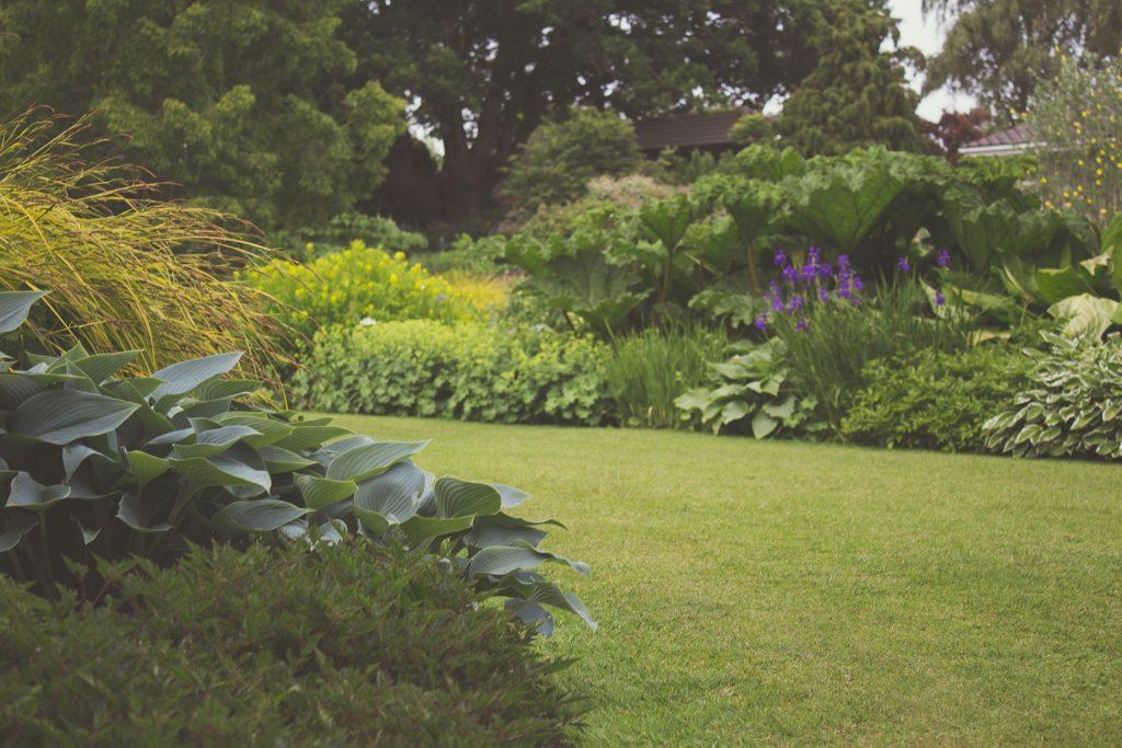 Stunning garden in spring